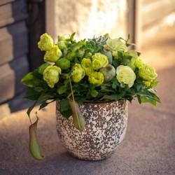 Keväänvihreä Äitienpäiväkimppu